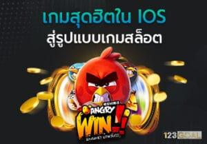 Angry Win!